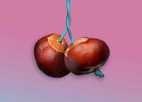 featured image thumbnail for post Conkers for Conkers